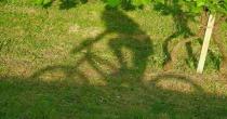 """Rinviata a domenica 7 maggio la 36esima edizione della pedalata ecologica """"Benvenuta Primavera"""""""
